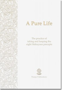 A pure life booklet